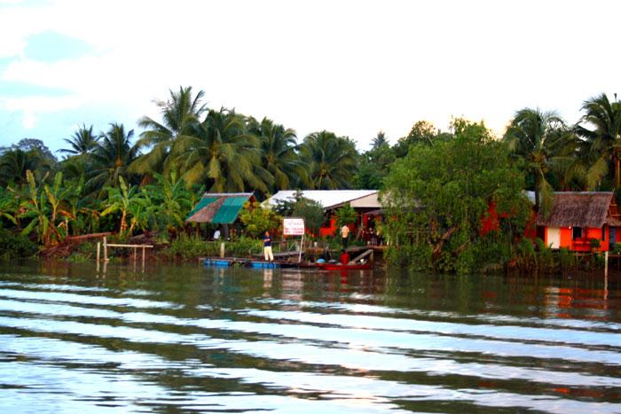 ล่องแม่กลองท่องอัมพวา | Thai Boat Club